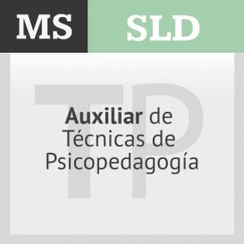 Auxiliar de Técnicas de Psicopedagogía
