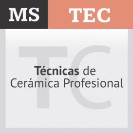 Técnicas de Cerámica Profesional